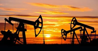 Crude Oil Pumps